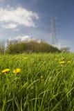 Linha eléctrica sobre o prado, Reino Unido. Fotos de Stock Royalty Free