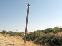A linha elétrica de Usbequistão Mayskiy arruina 2007 Fotos de Stock