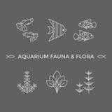 Linha fina ícones do vetor - flora e fauna do aquário ilustração do vetor