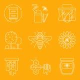 Linha fina ícones lisos do mel moderno da apicultura e da colheita Fotos de Stock