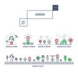 Linha fina moderna grupo isolado jardim do ícone da flor e qua superior Imagem de Stock Royalty Free