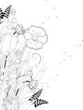 Linha floral desenhado Fotografia de Stock