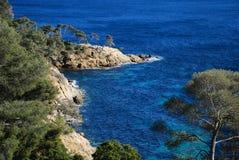 Linha francesa da costa com rochas e árvores Fotos de Stock Royalty Free