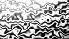 Linha fundo da zebra da animação do movimento do teste padrão 4K Em um fundo branco, em um círculo ondas, preto e branco, morphin video estoque