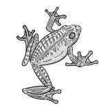 Linha ilustração da rã da arte fotos de stock royalty free