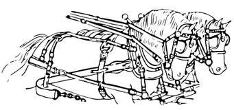 Linha ilustração de cavalos que puxam um transporte Fotografia de Stock