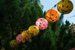Linha lanternas de papel chinesas muito-coloridas contra a árvore Fotografia de Stock Royalty Free