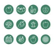 Linha lisa ícones das maçãs Colheita de Apple, festival da colheita do outono, ilustrações da cidra do fruto do ofício Sinais fin ilustração royalty free