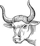 Linha principal arte de Bull ilustração stock