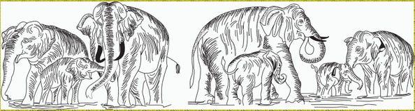 Linha raana do elefante do thunpath da arte Fotografia de Stock