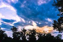 Linha superior das árvores verdes sobre o céu foto de stock