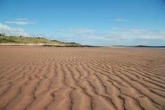 Linha teste padrão na areia Fotografia de Stock