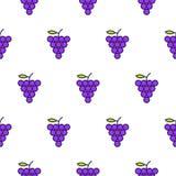 Linha teste padrão sem emenda das uvas do vetor do ícone Imagem de Stock