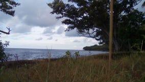 Linha tropical da costa Imagem de Stock