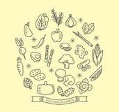 A linha vegetal ícones com estilo do esboço projeta elementos Fotos de Stock