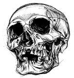 Linha vetor do desenho do crânio do trabalho ilustração do vetor