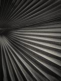 Linhas abstratas Fotografia de Stock Royalty Free