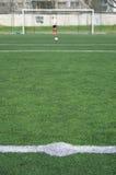 Linhas abstratas brancas em um campo verde Imagem de Stock