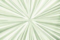 Linhas convergentes - listras coloridas - espectro brilhante do arco-íris de linhas convergentes radiais das cores imagens de stock royalty free