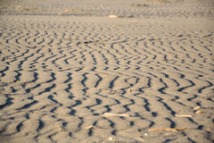Linhas da areia Fotografia de Stock Royalty Free