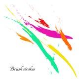 Linhas da escova da aquarela Cursos da escova do vetor Imagens de Stock