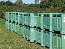Linhas de caixas da fruta no arquivadas Fotos de Stock Royalty Free
