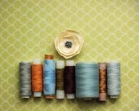 Linhas de costura Fotografia de Stock Royalty Free