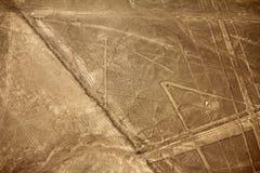 Linhas de Nazca - aranha Fotos de Stock