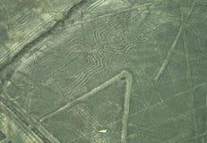 Linhas de Nazca: A aranha foto de stock