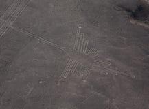 Linhas de Nazca em Peru Fotos de Stock Royalty Free