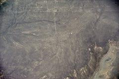Linhas de Nazca - o colibri Imagens de Stock Royalty Free
