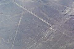 Linhas de Nazca - o papagaio Fotografia de Stock