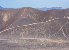 Linhas de Palpa e Geoglyphs, Peru foto de stock