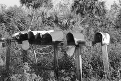 Linhas de uma comunicação múltiplas Imagem de Stock