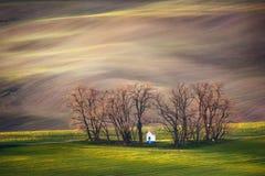 Linhas e ondas com árvores e capela na primavera, Moravia sul, República Checa fotos de stock royalty free