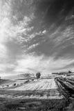 Linhas e paisagem Fotos de Stock Royalty Free