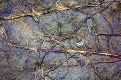 Linhas Geological na pedra da praia Fotos de Stock Royalty Free