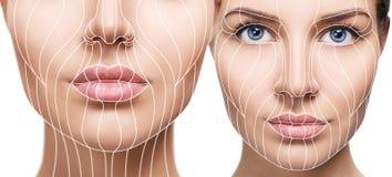 Linhas gráficas que mostram o efeito de levantamento facial na pele imagem de stock royalty free