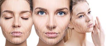 Linhas gráficas que mostram o efeito de levantamento facial na pele fotografia de stock