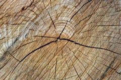 Linhas rachadas duras textura na madeira Imagens de Stock Royalty Free
