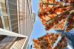 Linhas urbanas dos arranha-céus Foto de Stock