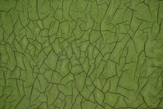 Linhas Verdes Fotos de Stock Royalty Free
