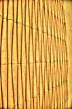 Linhas verticais Imagem de Stock Royalty Free