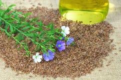 Linho com as flores azuis e brancas em sementes Imagens de Stock Royalty Free