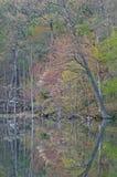 linię brzegową wiosna Zdjęcia Stock