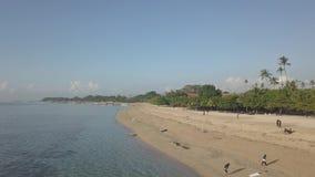 Linia brzegowa Bali w ranku zbiory wideo