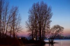 linia brzegowa i drzewa na nim Drzewa są widzieć sylwetkowi przeciw zmierzchu niebu Zdjęcia Stock
