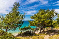 Linia brzegowa Makarska Riviera, Makarska -, Chorwacja Obraz Royalty Free