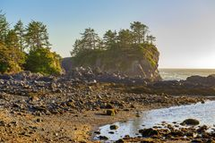 Linia brzegowa przy dzikim pokojowym śladem w Ucluelet, Vancouver wyspa, b Zdjęcia Royalty Free