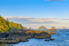 Linia brzegowa przy dzikim pokojowym śladem w Ucluelet, Vancouver wyspa, b zdjęcie royalty free